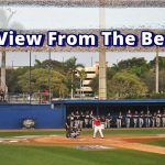 FAU baseball view from the berm