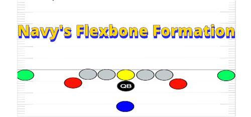 navyflexbonegraphic
