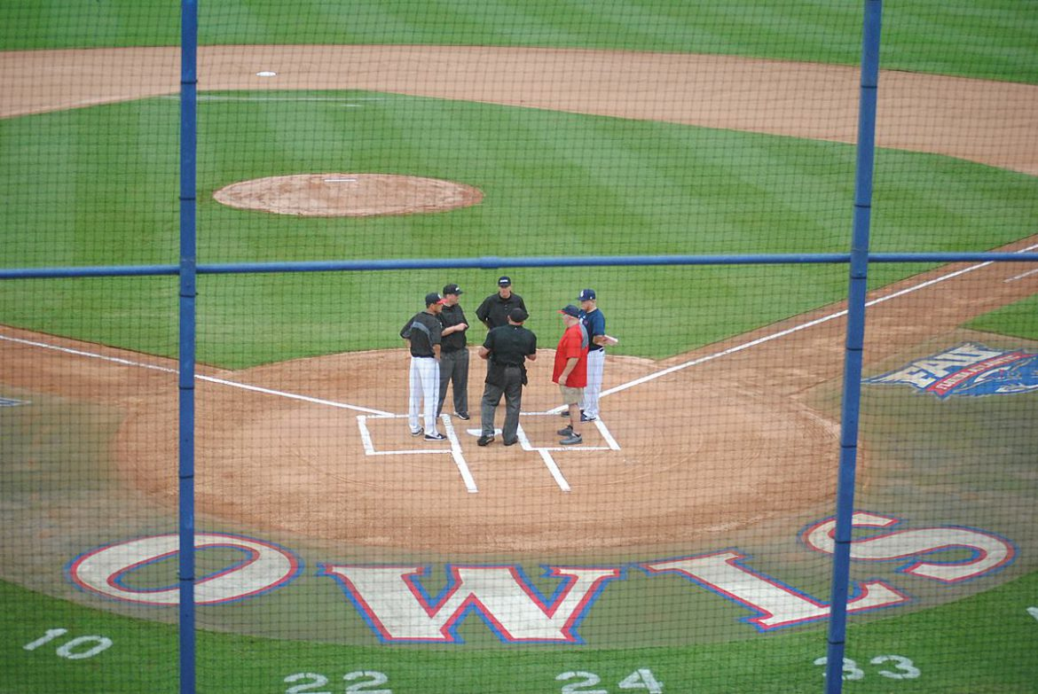fau coaches umpires